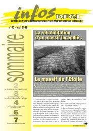 Infos DFCI N°42, mai 1999 - Irstea