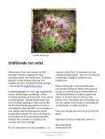 FMS tidning nr 23.pdf - Förbundet för Musikterapi i Sverige - Page 3