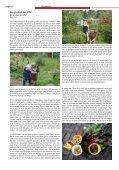 Schoffelen - vtv Streven naar Verbetering - Page 6