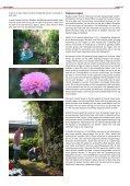 Schoffelen - vtv Streven naar Verbetering - Page 7