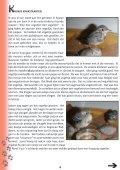 nummer 3 - VOC Geraardsbergen Lierde - Page 7
