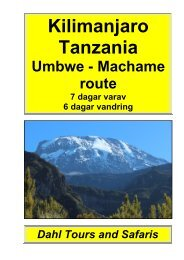 Kilimanjaro, Umbwe / Machame route 6 dagar - Safari i Tanzania