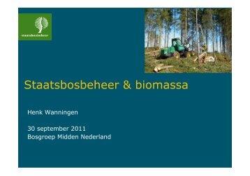 Biomassa - Henk Wanningen