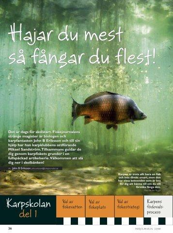 PDF-format - Till sportfiskebilder.se