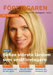 FÖRETAGAREN FÖRETAGAREN - Reporter AB