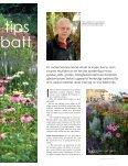 Stadsträdgårdsmästarens tips för en vacker rabatt - Page 2