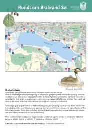 Turforslag rundt om Brabrand sø (pdf 297 KB) - Aarhus.dk
