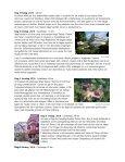 Cykla i vackra Tauber- och Maindalen - Lingmerths Buss - Page 2