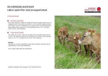 Lækre opskrifter med jerseykalvekød - Dyrenes Beskyttelse