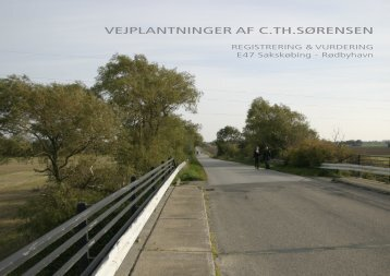 VEJPLANTNINGER AF C.TH.SØRENSEN - Vejdirektoratet