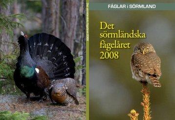 Omslag Årsbok 2009.indd - FSO