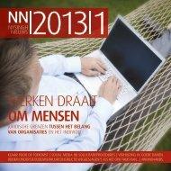 Nysingh Nieuws 2013|1
