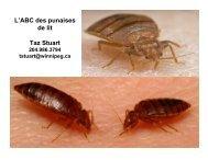 L'ABC des punaises de lit Taz Stuart - Canadian Public Health ...