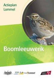 Lommel - boomleeuwerik - Provincie Limburg