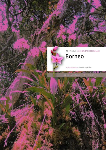 Borneo - Download hier
