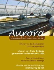 Aurora april 2004