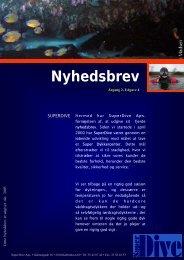 Nyhedsbrev Aar 2 - Udg 4 arbejdsudgave.pub - SuperDive