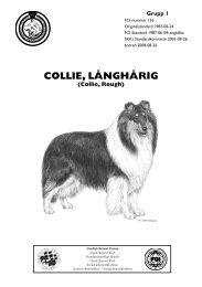 Standard för Collie, långhårig - Svenska Collieklubben