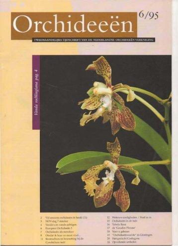 1995 - 6 - Orchideeën Vereniging Vlaanderen