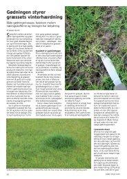 Gødningen styrer græssets vinterhærdning - Turfgrass
