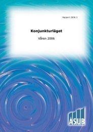 Konjunkturläget våren 2006 - ÅSUB