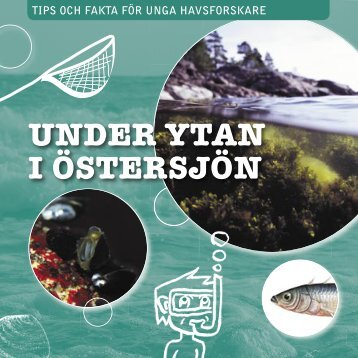 Under ytan i Östersjön (pdf)