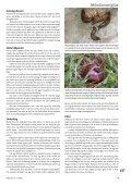 Utflykt till danska trädgårdar Mördarsniglar Kål - Monarda - Page 5