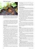 Utflykt till danska trädgårdar Mördarsniglar Kål - Monarda - Page 6