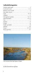 Egå Engsø - rensningsanlæg, naturperle og rekreative ... - Aarhus.dk - Page 2