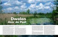 'Dwalen door de Peel' in Het Vermoeden 3, 2013 - Verhalen van ...