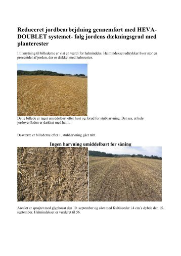 Halmindeks HEVA-DOUBLET - Reduceret jordbearbejdning