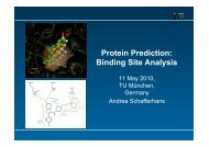Protein Prediction: Binding Site Analysis - ROSTLAB.ORG