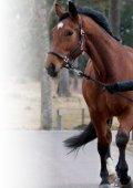 Känn din hästbäst! - Distriktsveterinärerna - Page 3