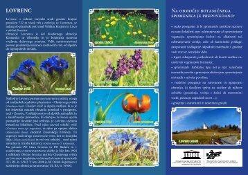 Zloženka Lovrenc, botanični biser Posavskega hribovja - PD Lisca
