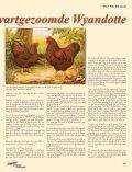 De kleur van de goud zwartgezoomde Wyandotte - Page 2