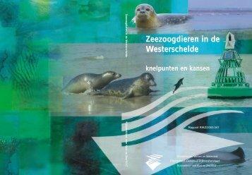 Zeezoogdieren in de Westerschelde knelpunten en kansen