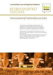 BEDRIJFSPORTRET VLEESVEE - Bio Zoekt Boer