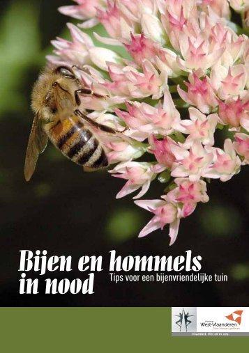Bijen en hommels in nood - Inagro