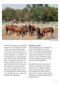 KONFLIKTADFæRD HOS HESTE - Dyrenes Beskyttelse - Page 3