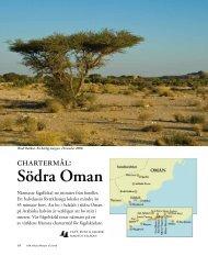 Södra Oman - Natur og kultur