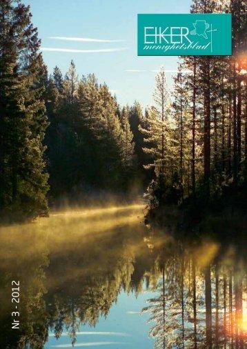 Nr 3 - 2012 - Øvre Eiker kirkelige fellesråd - Den norske kirke