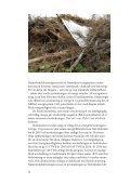 Biobränslen och mångfald - Naturskyddsföreningen - Page 2