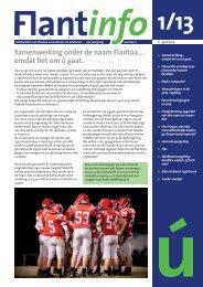 flantinfo 2013-01 - Flantua-Verheij Accountants & Adviseurs