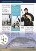Vissen vanaf strekdammen - Sportfish Moments - Page 4
