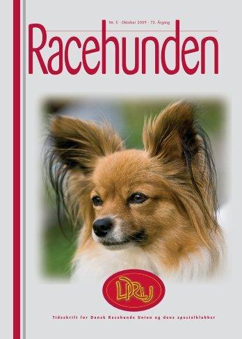 Racehunden 2008 Oktober - Dansk Racehunde Union