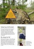 Stormskadad skog - Skogen i Skolan - Page 3