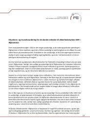 Situations- og trusselsvurdering for de danske enheder til ...