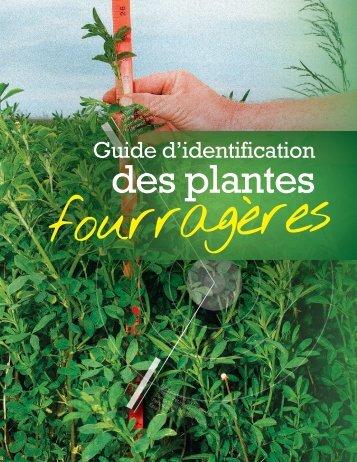 Guide d'identification des plantes fourragères - Valacta