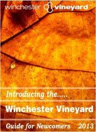 Introducing the Vineyard - Winchester Vineyard
