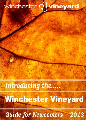 Introducing the Vineyard - Winchester Vineyard